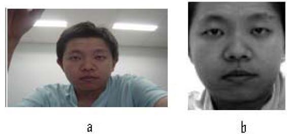 gb3 Pengolahan Citra dan Deteksi Wajah pada Sistem Pengenalan Wajah